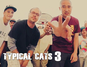 Typical Cats – The Crown | Official Music Video