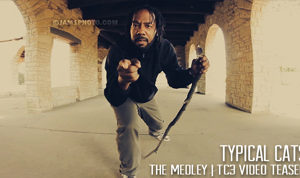 [VIDEO] TYPICAL CATS – THE MEDLEY | TC3 Video Teaser