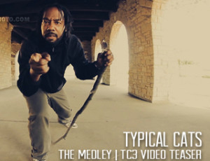 Typical Cats – The Medly | TC3 Video Teaser