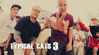 [VIDEO] TYPICAL CATS – THE CROWN